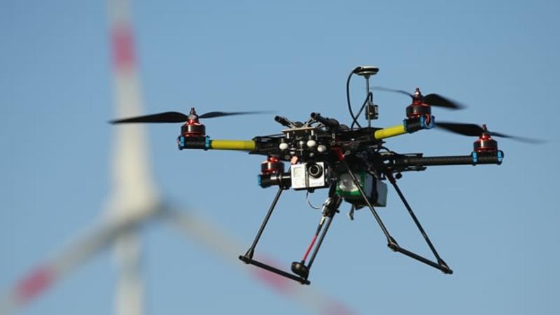 Uso de drones para proteger especies amenazadas