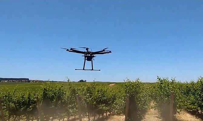 Usando Drones para la inspección de viñedos en la viticultura