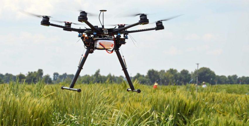 Utilización de drones para optimizar el cultivo